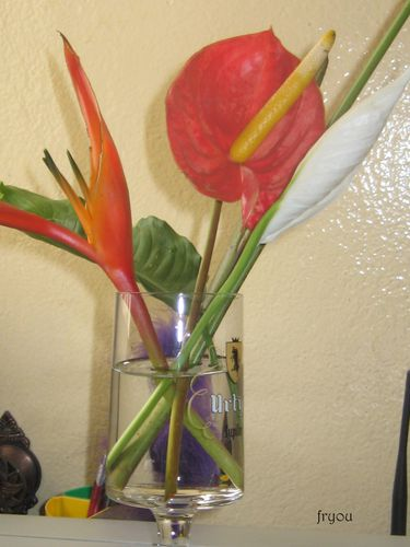 fleurs-0905.JPG