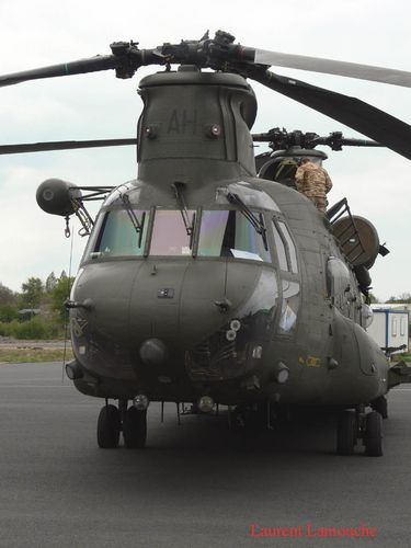 Chinook-Laurent--5--copie.jpg