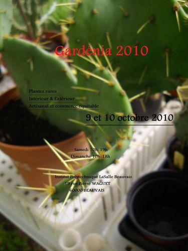 gardenia-copie-1.jpg