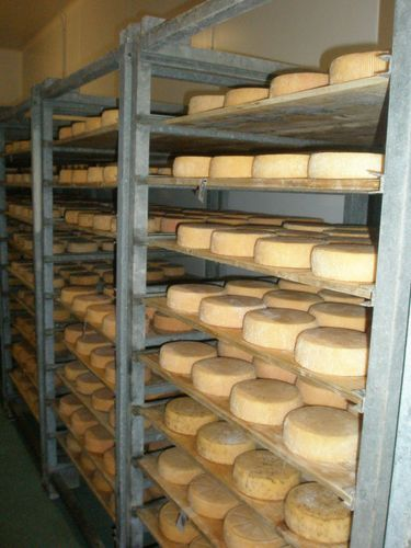 Fromages chambre froide