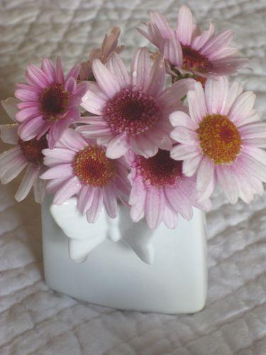 Fleurs-5278.jpg