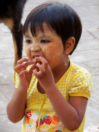 birmanie 950