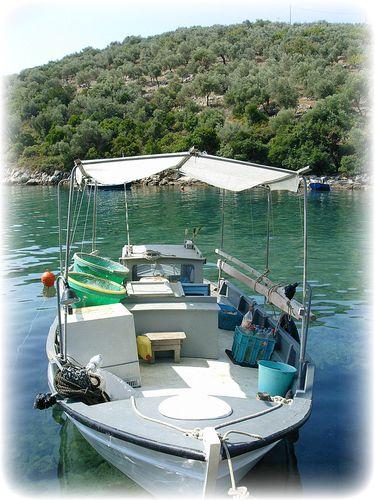 barque steni vala