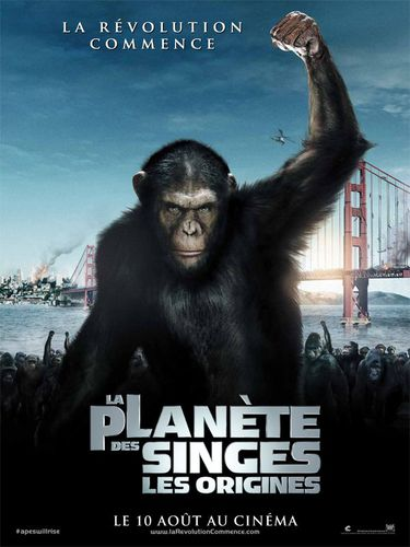 planete-des-singes-origines.jpg