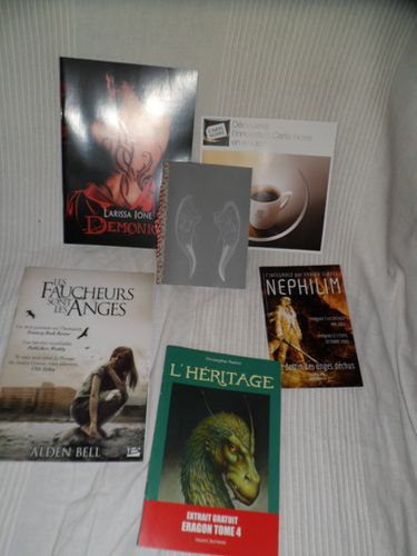 goodies-livresques.JPG