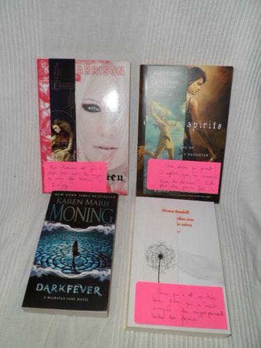 livres-anges-demons.JPG