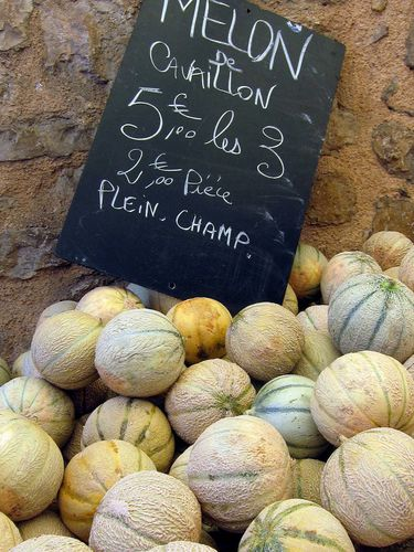 Provence-Cavaillon-Melons-4.JPG
