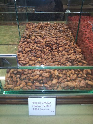pistacherie feves cacao criollo