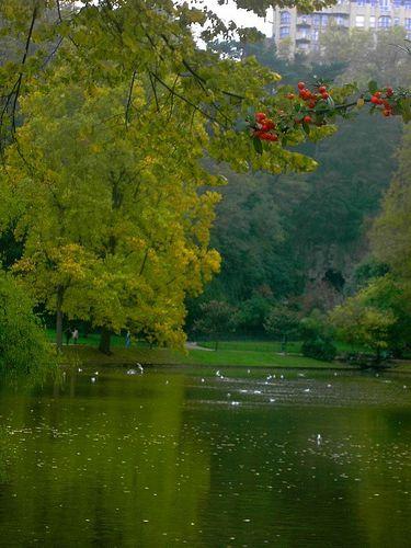 autumn19