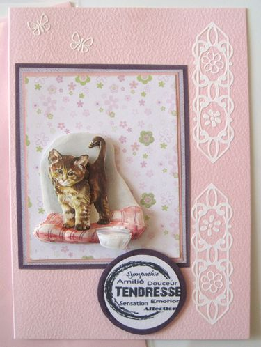 carte rose petit chat 3D