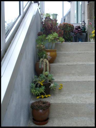 Escalier02