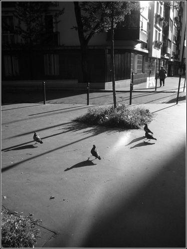 rue des orteaux, paris XXeme, 4/06/14, 20h