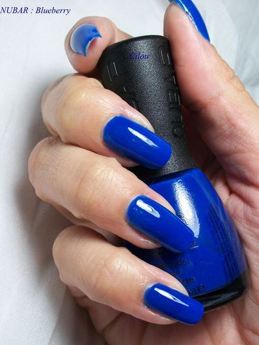 nubar blueberry (2)
