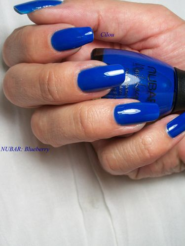nubar blueberry (4)