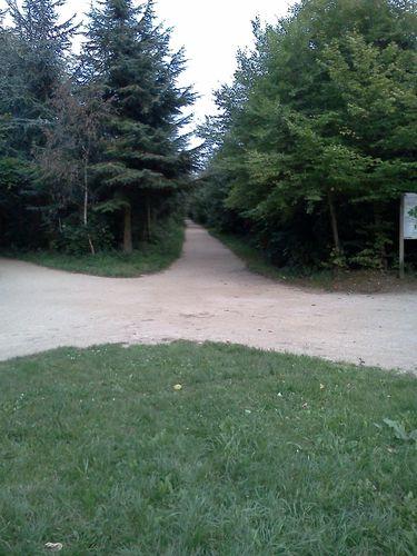 Intersection Route de la demi-Lune- Avenue des Tribunes