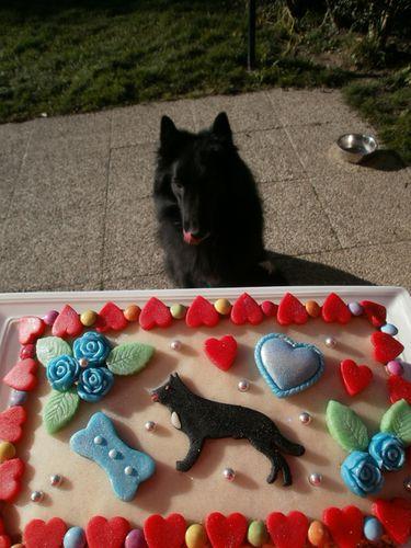 gâteau 5