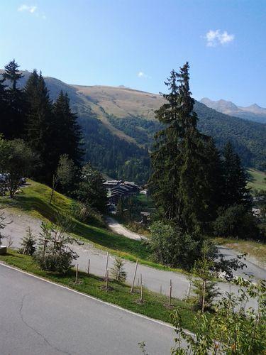 Alpes 2012 002