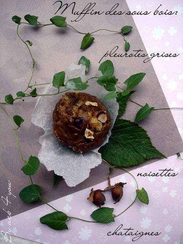 muffin des sous bois