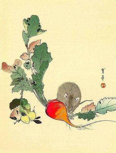 Souris-Radis-rouge-Watanabe Shotei-1851-1918