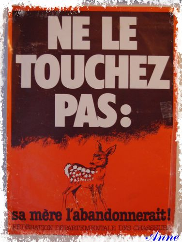 Chasse affiche