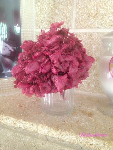 A d faut d 39 avoir du beau temps je ressuscite l - Quand faut il couper les fleurs fanees des hortensias ...