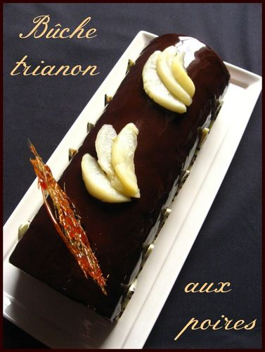 buche trianon 010 - Copy