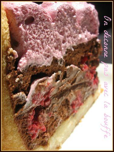 Copy of charlotte framboise chocolat et plank salmon 059