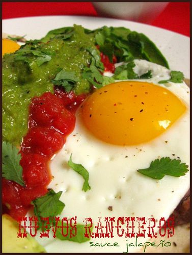 Copy of huevos rancheros 014
