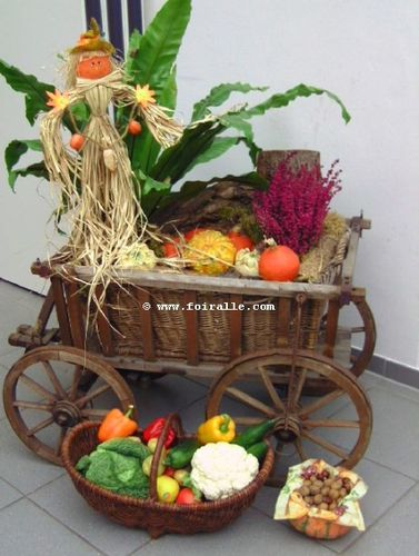 automne-arrangement-fruits-legumes-seches