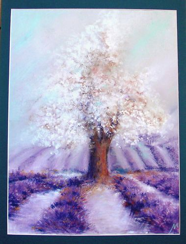 illustration-pastels-secs-lavandes-arbre-amandier