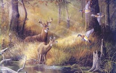 deer-wallpaper-mural.jpg