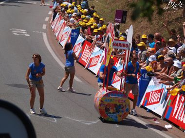 TdF 2011 animations 001