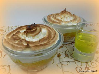 09012011-citron-meringue-013.JPG