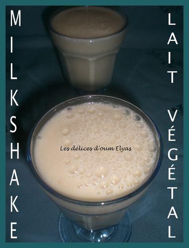 Milkshake au lait végétal (4)