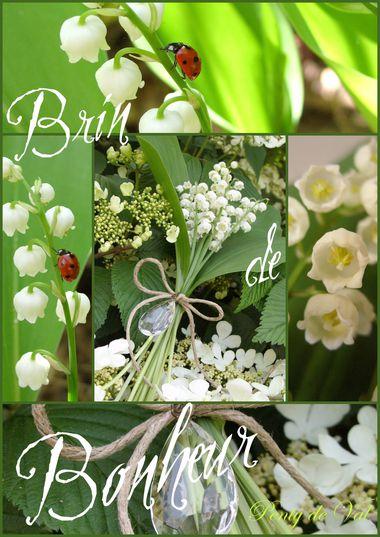 1er Mai Brin De Bonheur