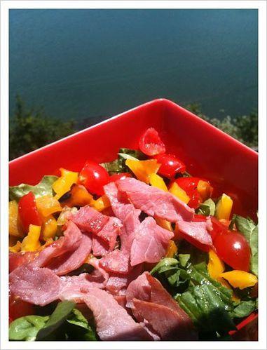 salade opt