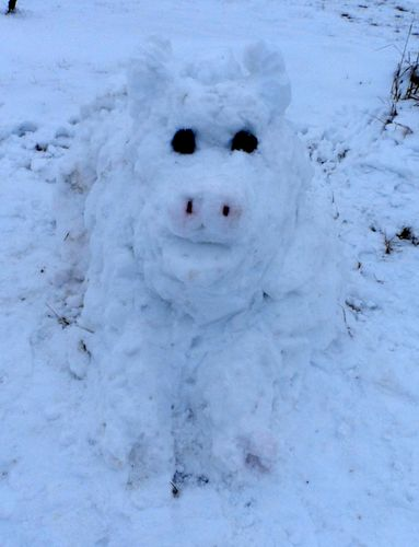 frosty-the-snow-pig.jpg