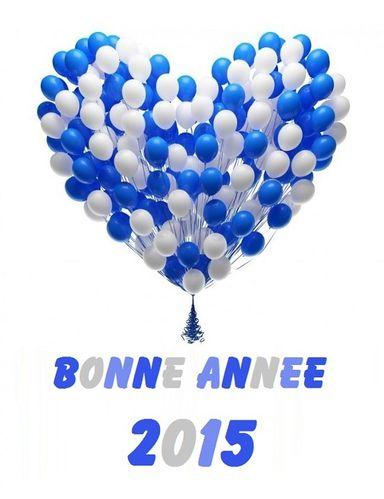 carte-bonne-annee-2015.jpg