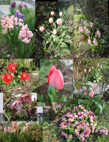 printemps 1