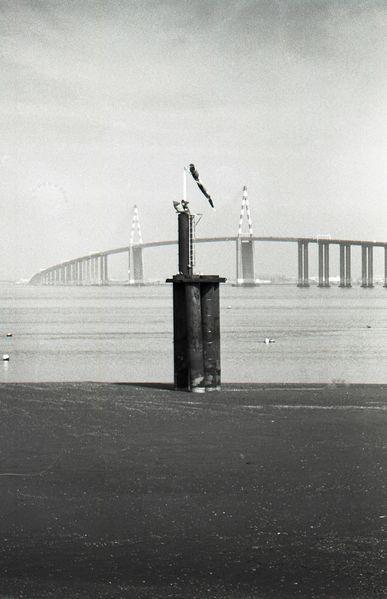 Pont-St-Nazaire---108.jpg