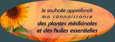 Formation et initiation &#xE0; l'usage des plantes m&#xE9;dicinales et des huiles essentielles
