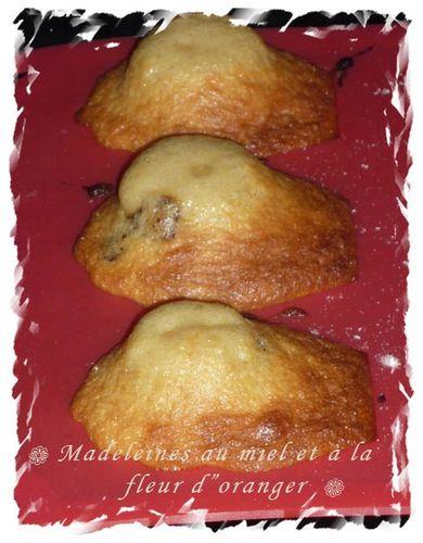 madeleine-au-miel-et-a-la-fleur-doranger.jpg