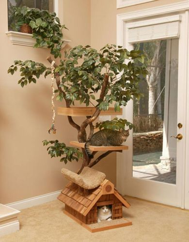 Arbre-chat-luxe.jpg