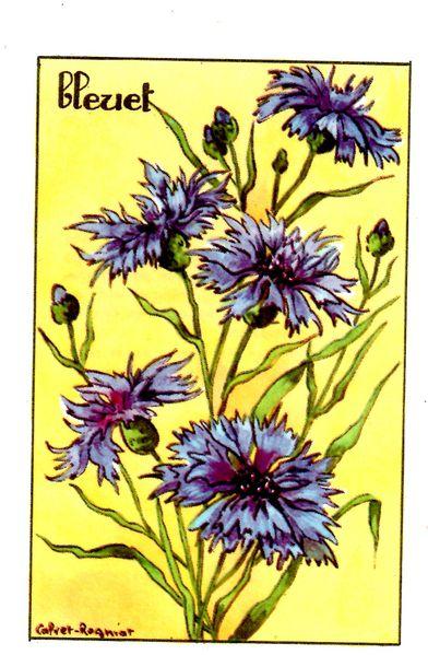 fleur018.jpg