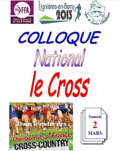 Affiche-colloque-cross-2013.JPG