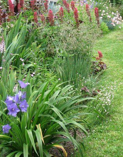 jardin-brigitte3.jpg