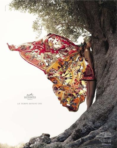 Hermès-Campagne-printemps-été-2012-Bette-Frank