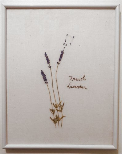 french-lavender.JPG