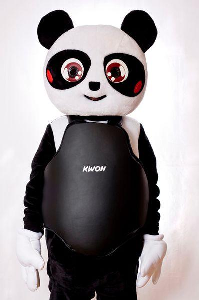Hill Nate 2009 Punch Me Panda 2 ph. Teresa Nasty