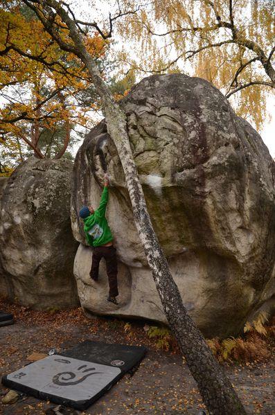 Fontainebleau2012 4119